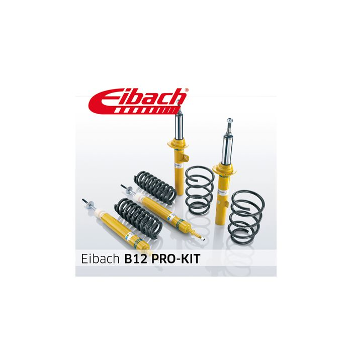 Eibach B12 Pro-Kit E90-55-019-03-22